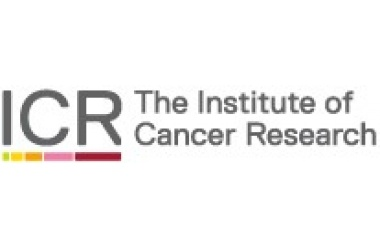 "ICR ""5-minute"" Survey on Patients' Experience of Access to Cancer Drugs"